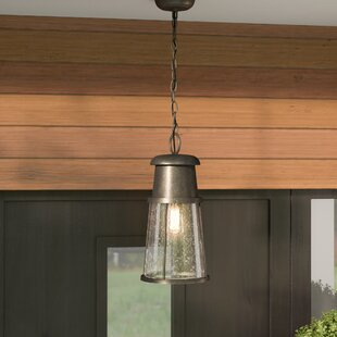 Reviews Cray 1-Light Outdoor Hanging Lantern By Mercury Row