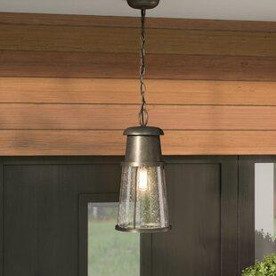 Comparison Cray 1-Light Outdoor Hanging Lantern By Mercury Row