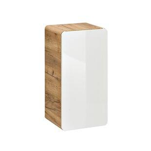 Ebern Designs Wall Mounted Cabinets