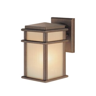 Brayden Studio Divya Outdoor Sconce