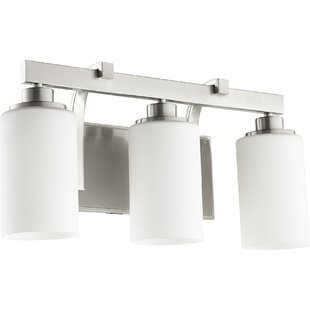 Moller 3-Light Vanity Light By Breakwater Bay