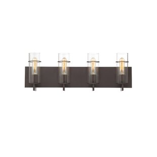 Williston Forge Hamon 4-Light Vanity Light