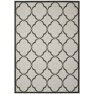 Adler Ivory Indoor/Outdoor Area Rug