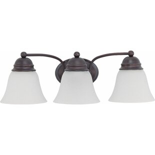 Charlton Home Emanuel 3-Light Vanity Light