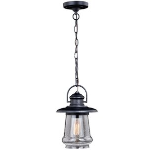 Comparison Anna 1-Light Outdoor Pendant By Breakwater Bay