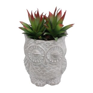 10cm Artificial Agrave Succulent In Planter By Bay Isle Home