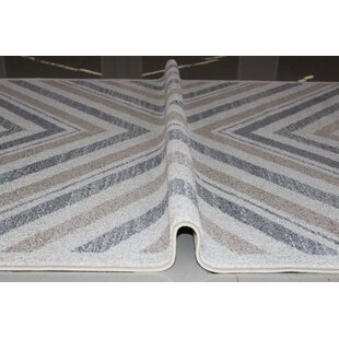Kieth Gray/White Area Rug By Williston Forge