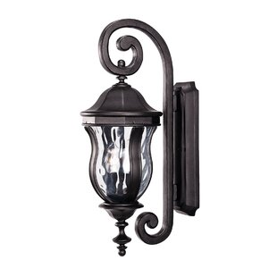 Coutu 2-Light Outdoor Wall lantern