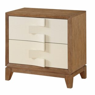 Beggs 2 Drawer Nightstand by Brayden Studio