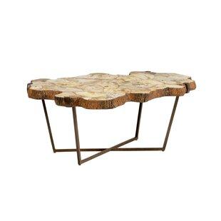 Wildwood Fossil Coffee Table