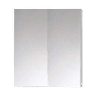 Antonelli 60cm X 70.3cm Surface Mount Mirror Cabinet By Mercury Row