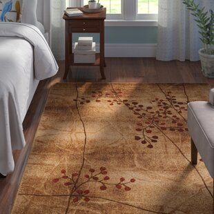 Coupon Smithtown Latte Area Rug by Andover Mills
