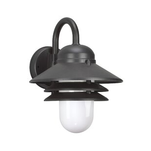 Bargain Kerrie 1-Light Outdoor Barn Light By Williston Forge