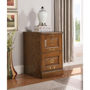 Canora Grey Angeline 2-Drawer Vertical Fi..