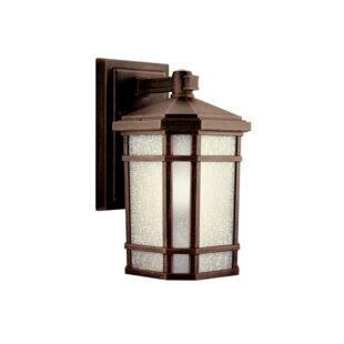 Robles 1-Light Outdoor Wall Lantern by Loon Peak