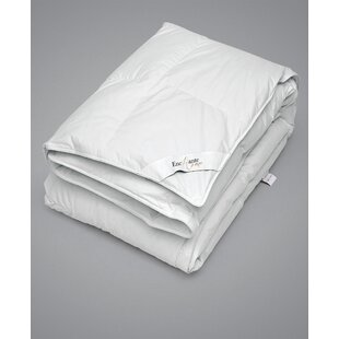 Enchante Home Luxury European Goose Fall/Spring Down Duvet Comforter