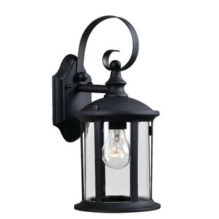 Orrin 1-Light Outdoor Wall Lantern