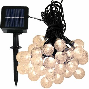 20 ft. 30-Light Globe String Light