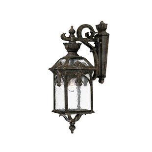Applebaum 1-Light Outdoor Wall Lantern