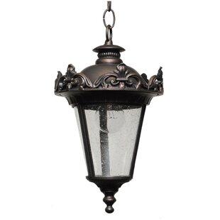 Comparison Petrey 1-Light Outdoor Hanging Lantern By Alcott Hill