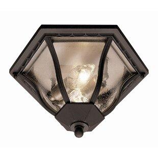 Outdoor Ceiling Light Fixtures Wayfair
