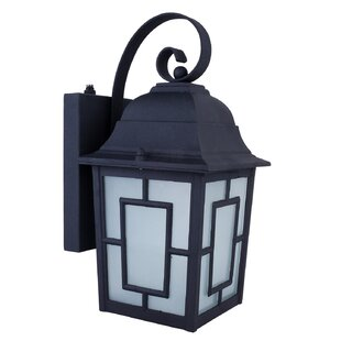 Isaac 1-Light Outdoor Wall Lantern