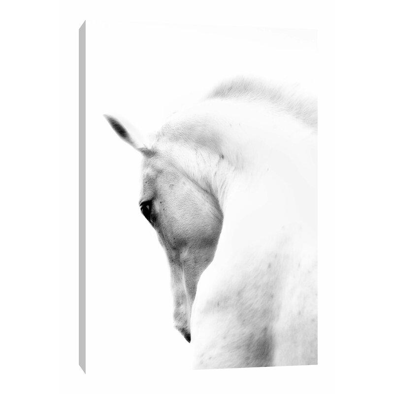 075459e3e6b 'White Horse Wrapped' Photographic Print on Canvas   Reviews