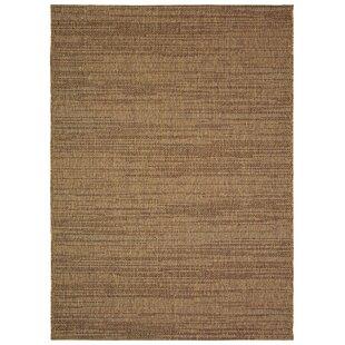 Bargain Alber Chestnut Brown Indoor / Outdoor Area Rug Sol 72 Outdoor