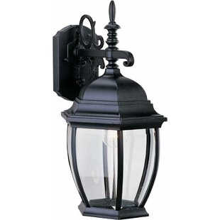 Best Choices 1-Light Outdoor Wall Lantern By Volume Lighting