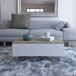 Mcconnellsburg Lift Top Coffee Table With Storage By Ebern Designs