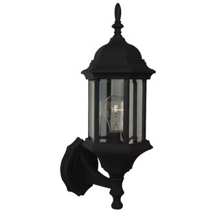 Frederica 1-Light Outdoor Sconce By Breakwater Bay Outdoor Lighting