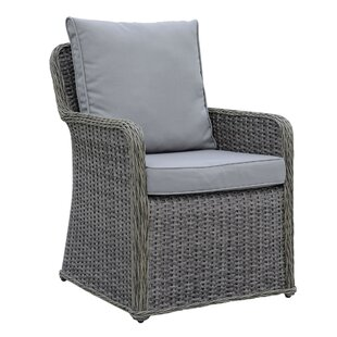 Winston Aluminum Wicker Frame Patio Dining Chair with Cushion (Set of 2)