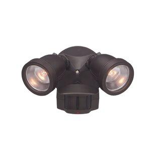 Red Barrel Studio Arie 2-Light Spot Light