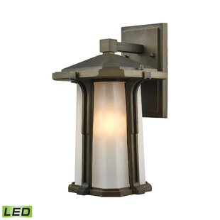 Compare prices Dima 1-Light Outdoor Wall lantern By Brayden Studio