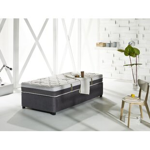 Unknow Four Seasons Daybed with Trundle and Mattress