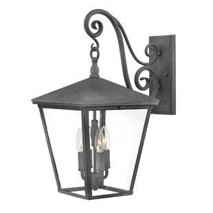 Inexpensive Trellis 4-Light Outdoor Wall Lantern By Hinkley Lighting