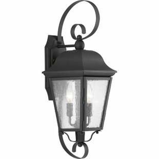 Darby Home Co Ephraim 2-Light Outdoor Wall Lantern