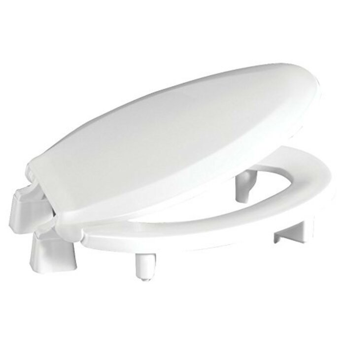Surprising Raised Plastic Elongated Toilet Seat Spiritservingveterans Wood Chair Design Ideas Spiritservingveteransorg