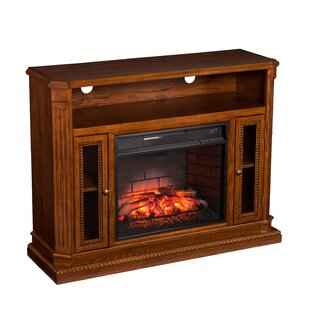 Contreras TV Stand for TVs up to 43 with Fireplace by Alcott Hill