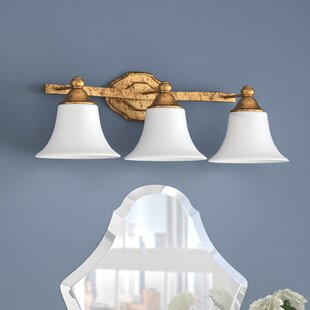 Price Check Destrey Modern 3-Light Bell Vanity Light By Willa Arlo Interiors