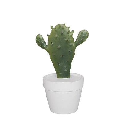 Bungalow Rose Decorative Resin Cactus Base Color: White