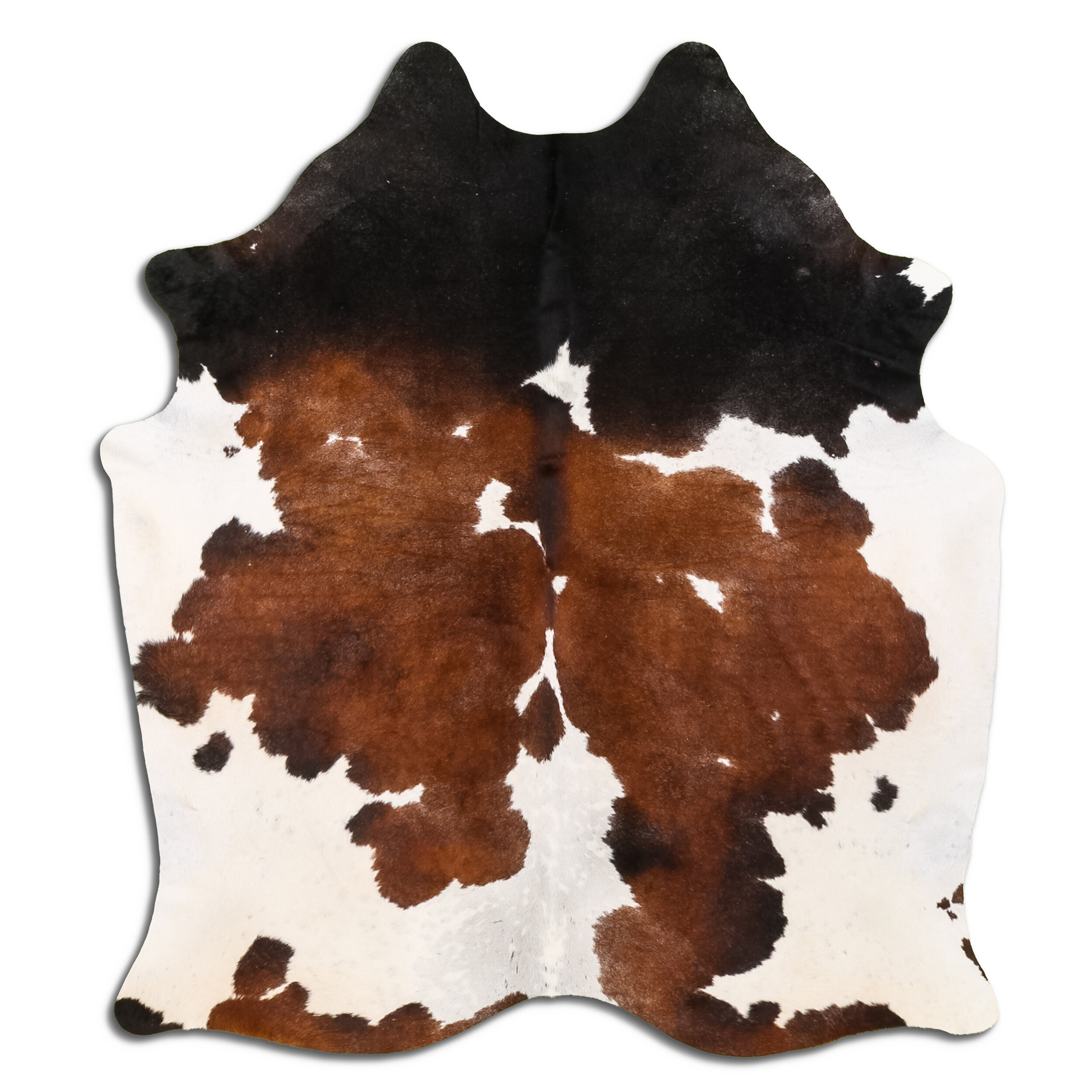 Rugaddiction Animal Print Handmade Cowhide Black Area Rug Wayfair