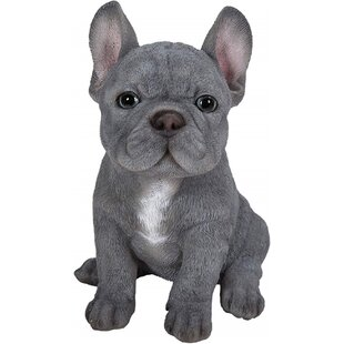 Biggs Pet Pal Blue French Bulldog Puppy By August Grove