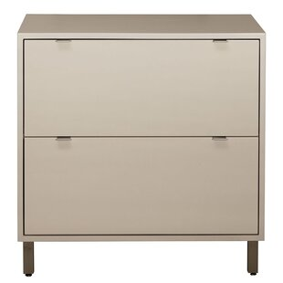 Latitude Run Southville 2 Drawer File Cabinet