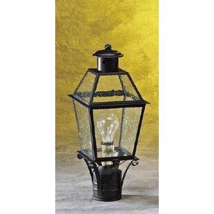 Tara 1-Light Lantern Head by Alcott Hill
