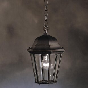 Connan 1-Light Outdoor Hanging Lantern by Astoria Grand