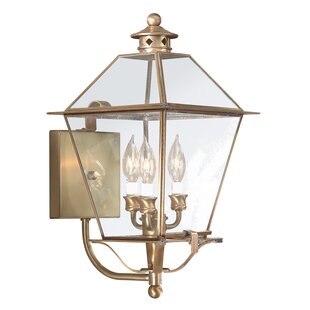 Best Reviews Theodore 3-Light Outdoor Sconce By Darby Home Co