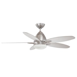 Best Reviews 44 Navaton 5-Blade Ceiling Fan with Wall Remote By Kendal Lighting