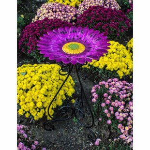 Backyard Expressions Metal Colorful BirdBath