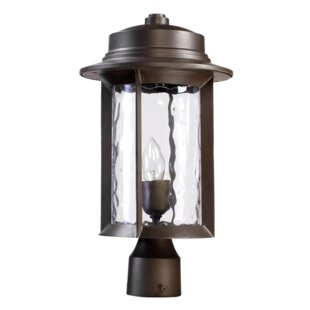 Osmond Outdoor 1-Light Lantern Head By Three Posts Outdoor Lighting